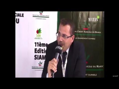 Fahd Bennani, Directeur Stratégie et développement des Thés Sultan