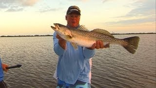 Catching Big Trout On Topwater Plugs