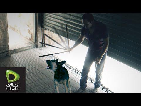 رجل يضرب كلب ويعذبه في الشارع .. شوف رد فعل الناس!