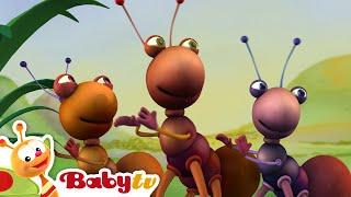 Tocando na Jamaica - Big Bugs Band, BabyTV Brasil