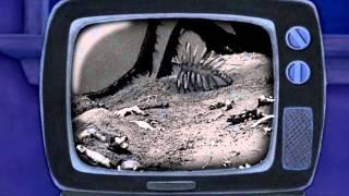 Lilo & Stitch 2  Stitch Has a Glitch 2005   Family Fun Night Scene