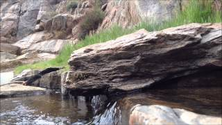 Peaceful Babbling Brook Water Stream San Diego Mountains
