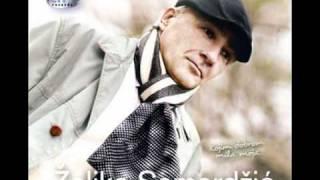 Zeljko Samardzic--Nije on ono sto ti treba--2009--JM