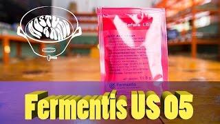 Fermento US 05