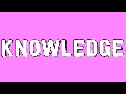 Knowledge Explained | Philosophy Tube ft. Animalogic