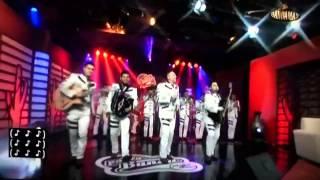 La trakalosa de Monterrey - par de cerdos en pala banda nig