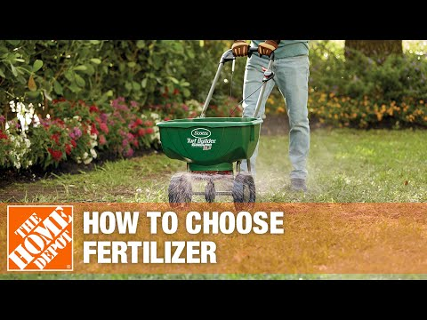 How to pick the best fertilizer for your lawn.