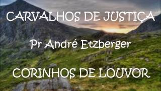 Carvalhos de justiça -  Pr André Etzberger