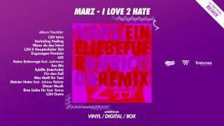 Marz - Eine Liebe für ft. Kamp (DJ Friction Vibin Remix)