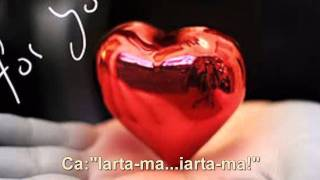 RONAN KEATING-Baby Can I Hold You[ROMANA] HD