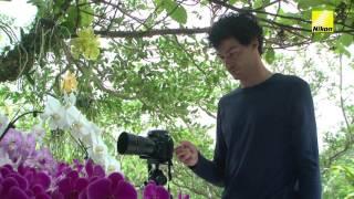 Video Digitutor 14 – Utilizando el live-view cuando se fotografía flores en primer plano