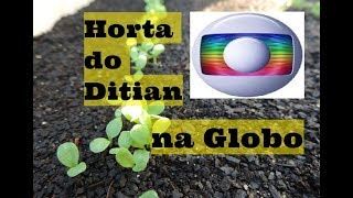 Horta do Ditian na GLOBO!!!