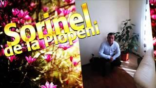 SORINEL DE LA PLOPENI 2016 -  PRIMIREA