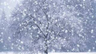 Тоника СВ - Зима