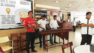 D E S P A C I T O  con Marimba desde Veracruz