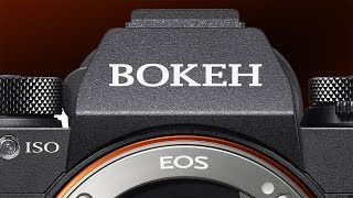 Camera Terms You're Saying Wrong! / Bokeh, EOS, & ISO Pronunciation