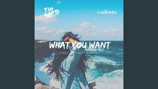What You Want (feat. Nicole Gartz)