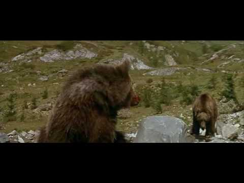 L'Ours (1988) - the cougar scene