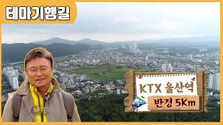 KTX 울산역 반경 5Km 다시보기
