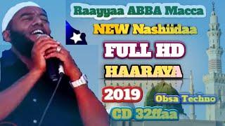 New RAAYYAA ABBAA MACCAA VOL.32ffaa Best Nashida   2019. Albuma Haariya Rayyaa Abbaa Maccaa V.32ffaa