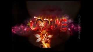 Mr Nelly - Mi Amor-
