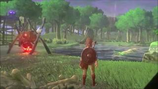 Zelda Breath of the Wild  - amiibo Wolf Link footage