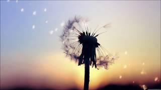 Melody Gardot - Sweet Memory