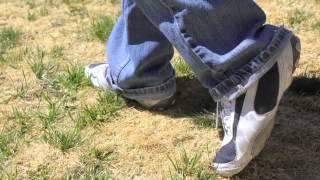 walking in grass video