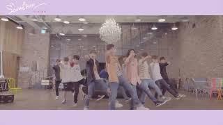 [Dance Practice] SEVENTEEN(세븐틴) - 예쁘다 (Pretty U) Dancecal 'LOVE ver.' width=