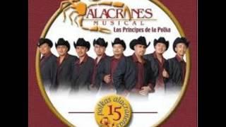 Alacranes Musical Polka alacranera