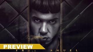 Anuel AA Ft. Farruko, Daddy Yankee, Zion & Lennox y Wisin - Sola (Official Remix) (Preview)