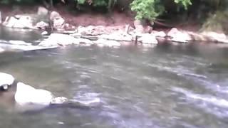 แม่น้ำคลองยัน บ้านหินดาน ต.ท่ากระดาน อ.คีรีรัฐนิคม