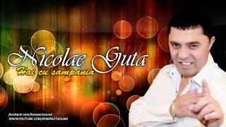 Nicolae Guta - Hai cu Sampania (HIT)