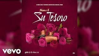 Shane E - Su Tesoro (Official Audio)