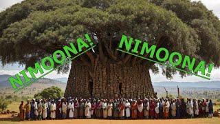 """New Oromo Music 2018 By Liiban Daadhii """"Abdiisa""""  NIMOONA!! """