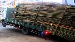 Lazy driver unloading bamboo LIKE A BOSS!!!