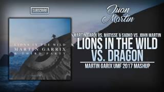 Lions In The Wild vs. Dragon (Martin Garrix UMF 2017 Mashup)