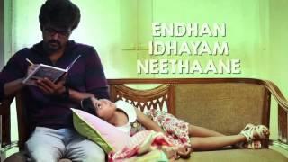 Eena Meena Teeka Song with Lyrics   Theri   Vijay, Samantha, Amy Jackson   Atlee   G V Prakash Kumar