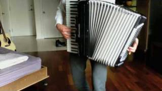 Lou Reed - Perfect Day cover on accordion