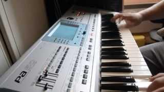 HORA (KORG PA50) 2013 (Sa ne cante o vioara)