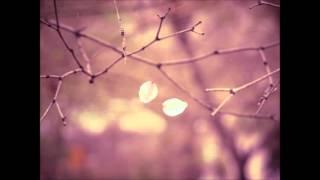 Stray away - The Colourist (Audio version)