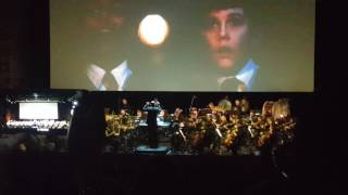 Harry Potter In Concert With Live Orchestra (3)