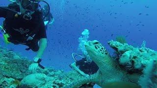 Soneva Jani Maldives Luxury Island Resort