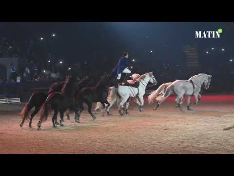 Video : Salon du Cheval d'El Jadida : Des shows exceptionnels pour animer les spectacles de nuit