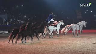 Salon du Cheval d'El Jadida : Des shows exceptionnels pour animer les spectacles de nuit