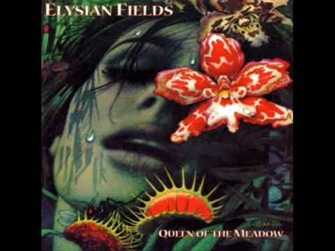 elysian-fields-cities-will-fall-twtichy