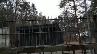 Wachhunde am Waldbühnen Hintereingang vom Murellenweg 28 12 2018