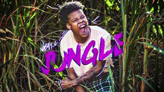 NASTY C - Jungle (prod by Cxdy) [Official Audio]