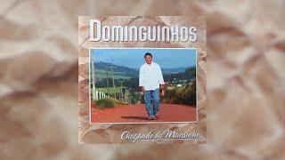 Sanfona Sentida - Dominguinhos