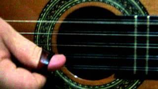 Tocando em frente - Almir Sater ; timbre da viola Luthier Marco Padula - Tabapuã -SP